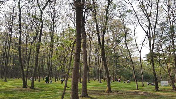 도시숲에서 휴식을 취하는 사람들.