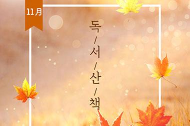 낙엽과 함께 짙어진 가을, 11월의 독서산책