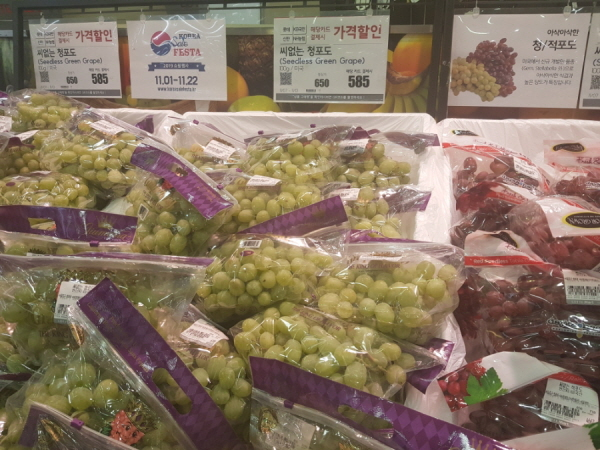 과일도 대폭 할인 중입니다.