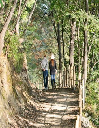 걷기 좋은 숲길
