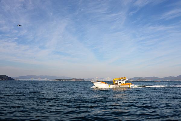 멸치잡이 어선 뒤로 거가대교 두 개의 다리를 잇는 섬이 저도다.