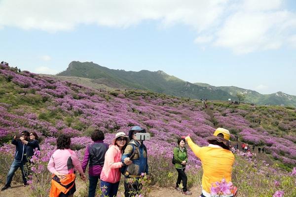 봄 여행주간(4.28~5.13)에 찾아간 황매산 철쭉.(사진=문화체육관광부 국민소통실)