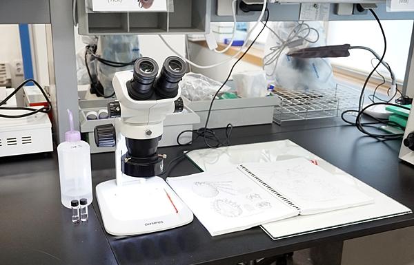 실험실 어느 곳에서도 밤잠을 새우며 연구에 매진할 누군가의 노력도 기억하자.