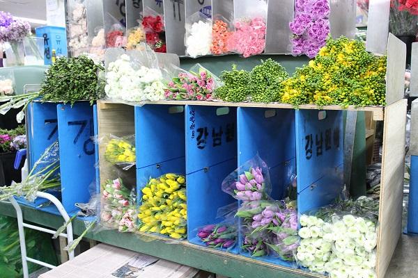 서울 고속버스터미널 꽃 도매시장에 놓여있는 꽃들