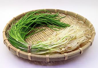 면역력 강화에 도움되는 식품 ① 도라지·삼채·달래