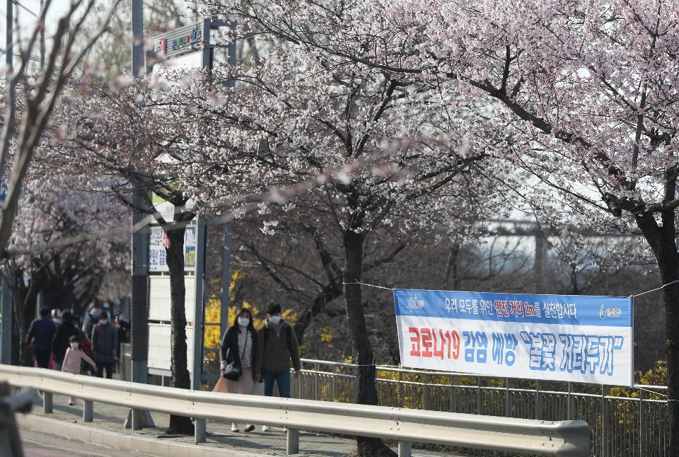 모두를 위한 '봄꽃 거리두기'