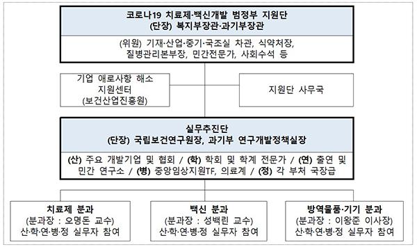 범정부 지원단 구성 및 역할.