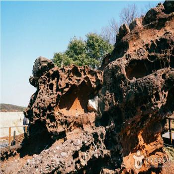 간척지를 걷다 보면 만날 수 있는 상한염에서 공룡알 화석을 찾아보자