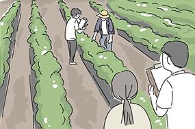 [웹툰] 이 땅에서 자라는 품종 이야기 - 양파가 좋아