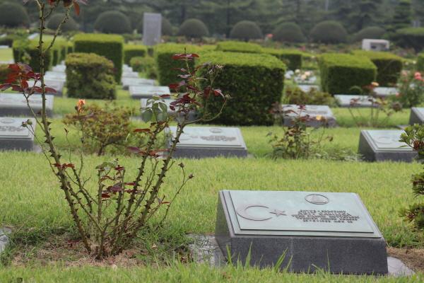 유엔기념공원 내 묘.