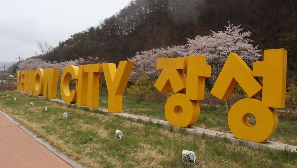 옐로우시티 장성은 노랑으로 이미지 마케팅 중이다.