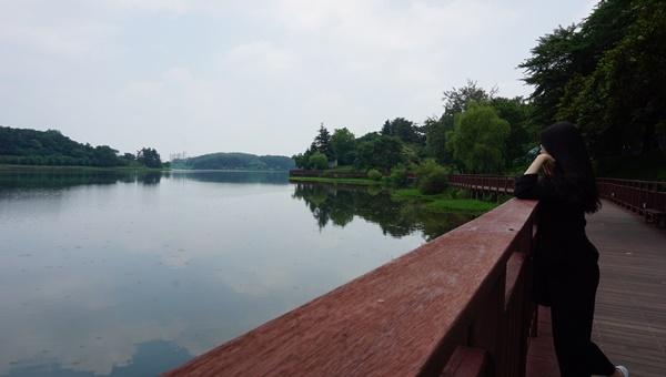 벚꽃놀이 명소이자 호수공원을 중심으로 이어진 나무데크 조명이 끝내주는 은파호수공원