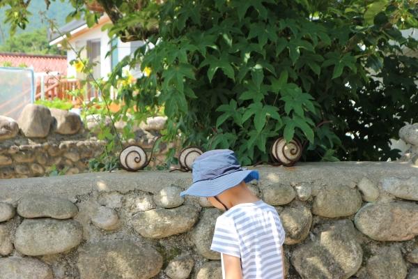 정감 어린 돌담길을 따라 거닐며 마을 곳곳에서 동물 모양 스톤아트를 찾는 아이의 모습.