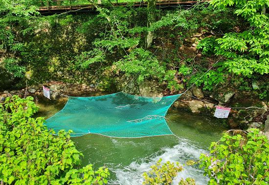 국립공원 물놀이 위험지역에 설치된 출입금지용 그물망.