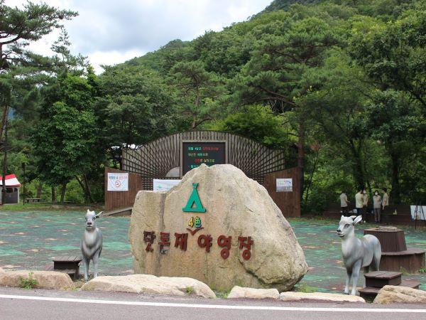 월악산 닷돈재 캠핑장의 중앙광장. 이곳에서 프로그램이 진행됐다.