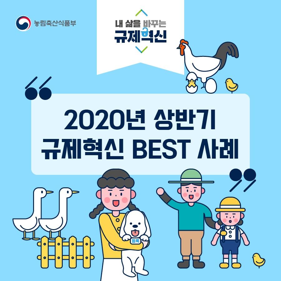 2020년 상반기 규제혁신 BEST 사례