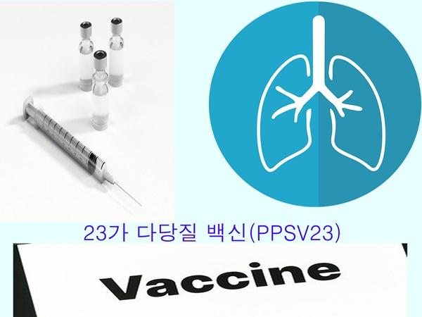 어르신 폐렴구균 국가무료접종 23가 다당질 백신(PPSV23)