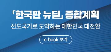 한국판뉴딜(e-book)