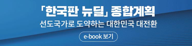 주택시장 안정 ebook
