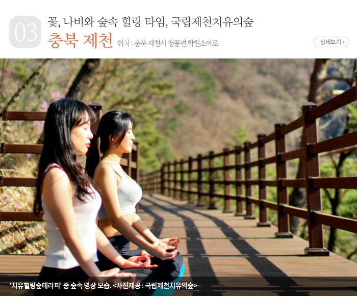 꽃, 나비와 숲속 힐링 타임, 국립제천치유의숲 - 충북 제천시