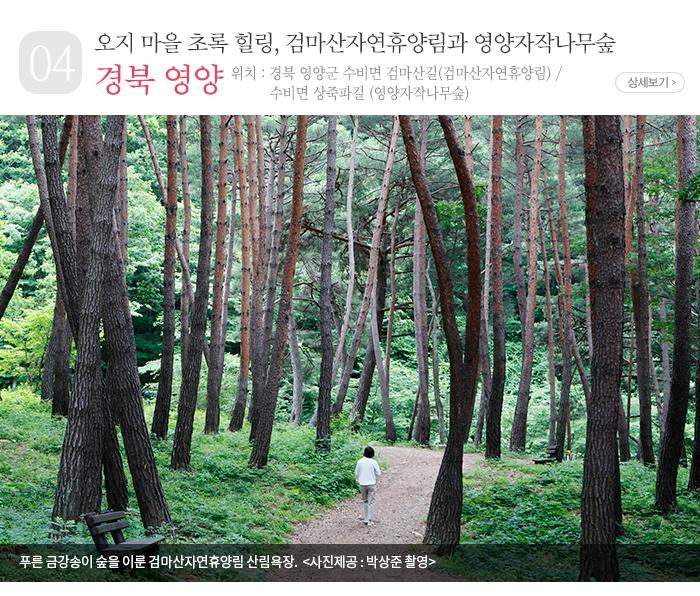 오지 마을 초록 힐링, 검마산자연휴양림과 영양자작나무숲 - 경북 영양군