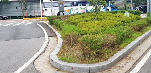 원활한 교통흐름을 위해 만들어진 교통섬.