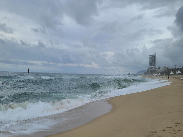 세계적인 방역 모델로 자리 잡은 해수욕장도 8월 22일 조기 폐장 했다.