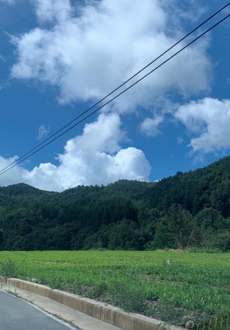 푸른 하늘은 미래세대에게 그대로 전해줘야 할 소중한 자연유산이다.