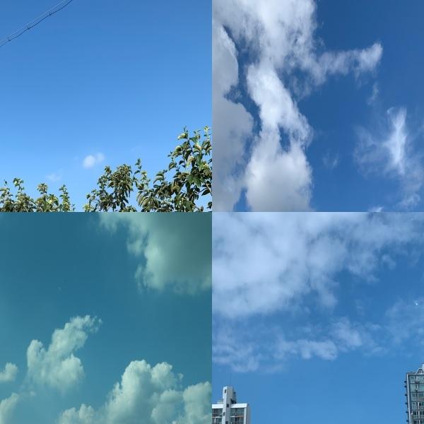 개인 스마트폰에 있는 하늘 사진들이다. 언젠가부터 푸른 하늘을 보는 것이 행운처럼 느껴져 맑은 날 이렇게 종종 사진을 찍어두고 있다.
