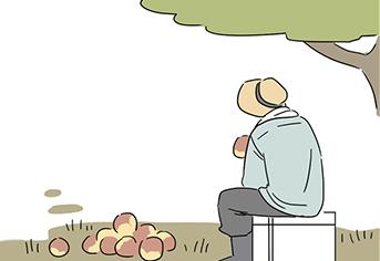 [웹툰] 낙과의 재발견