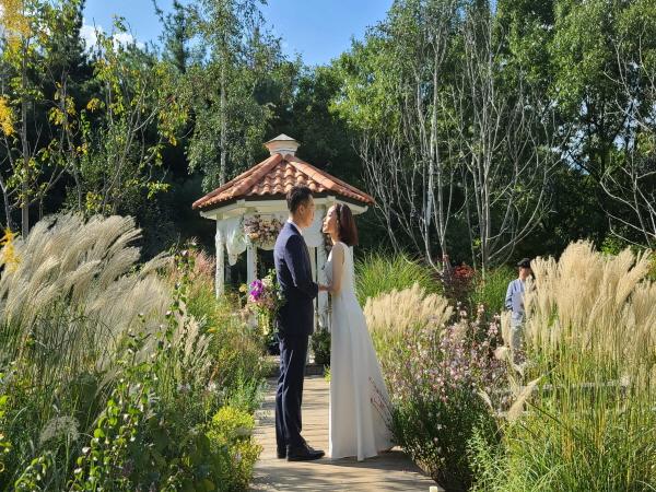 축하화환 대신 설렘정원에 핀 야생화, 억새, 청사초, 샤스타데이지가 결혼식을 더 빛나게 한다.