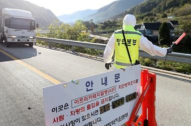 강원 화천 아프리카돼지열병 발생 …경기·강원 48시간 이동중지