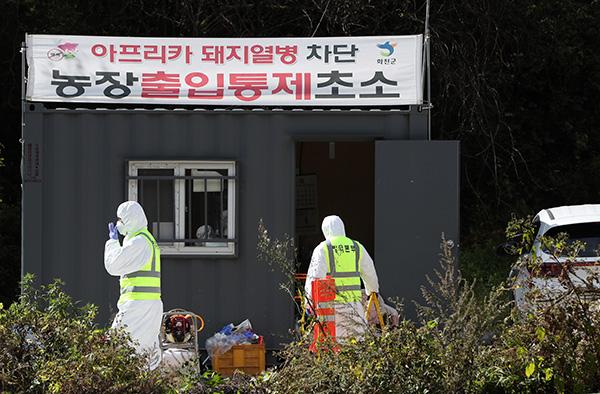 경기·강원 북부 및 인접 양돈농장 358곳 아프리카돼지열병 '음성'