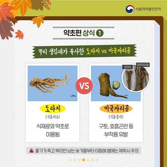 가을철 산행 중 주의해야 할 야생버섯과 약초