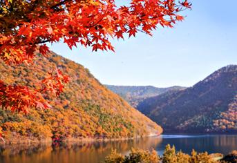 여유롭고 안전하게 즐기는 가을  비대면 관광지 100선