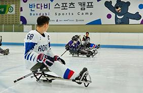 유소년 동계올림픽 '수호랑·반다비 스포츠 캠프' 성황