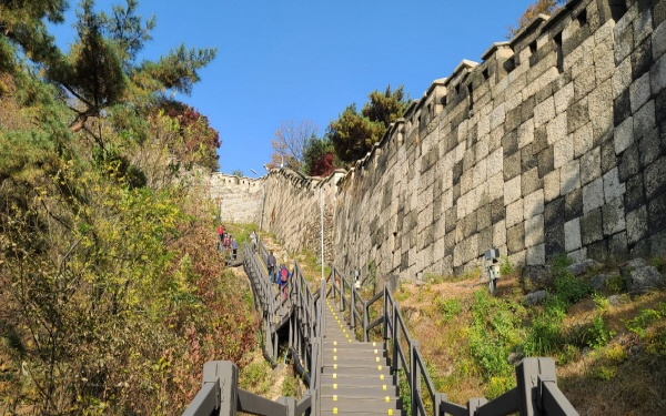 새로 개방하며 만들어진 곡장으로 향하는 계단 탐방로.