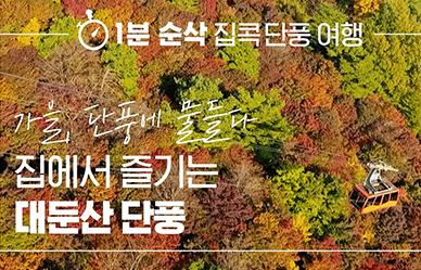 가을, 단풍에 물들다! 집에서 즐기는 '대둔산 단풍'