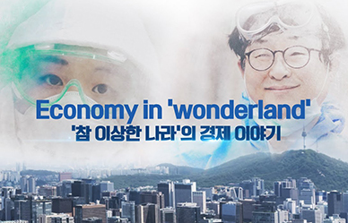 Economy in 'wonderland' '참 이상한 나라'의 경제 이야기