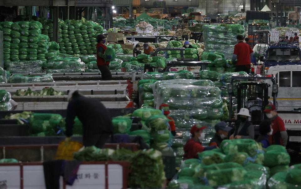 김장철, 분주한 도매시장