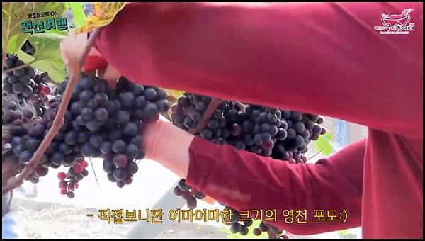 지역의 특산물로 만들어 여러 지역 맛을 느낄 수 있다. <출처=http://sool-fest.com/>
