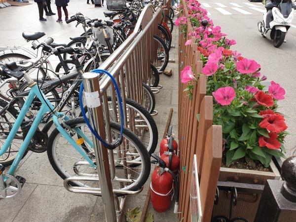 자전거보관대에 설치한 초록울타리.
