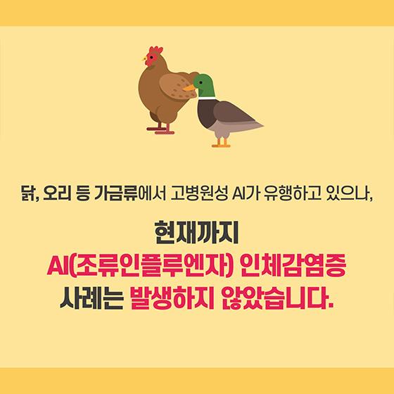 닭고기, 달걀, 오리고기 안심하고 드세요!