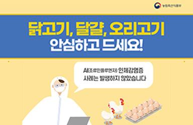 닭고기·달걀·오리고기 안심하고 드세요!