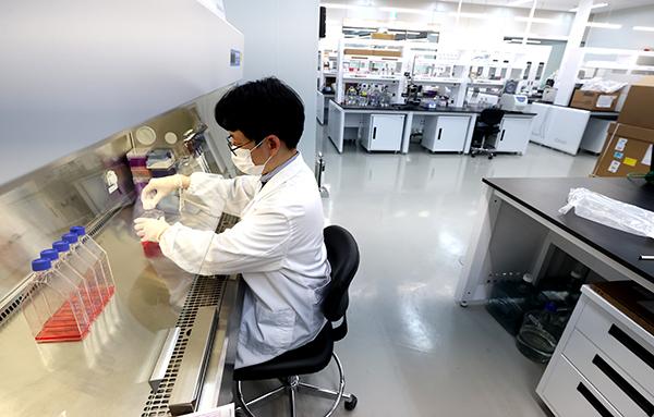 경기 성남시 셀리드 세포유전자치료제GMP센터에서 연구원이 코로나19 백신 개발 관련 연구를 하고 있다.