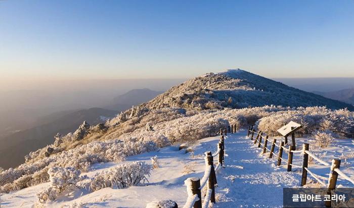 눈 내린 겨울 산책길 - 클립아트 코리아