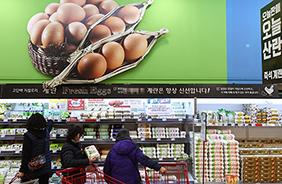 서울 시내 한 대형마트 달걀 판매대.