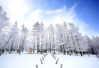 지금 느끼는 이 겨울의 정취…비대면 안심관광지 25선