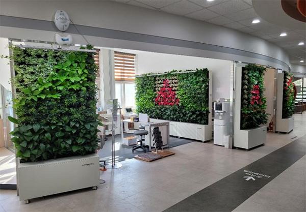 자연가(家)득 사업으로 실내입면 녹화시설이 조성된 부산시 해운대구청 민원실.