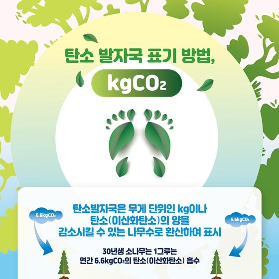 탄소 발자국 표기 방법, kgCO2